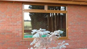 Golden Oak Picture Window